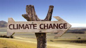 Cambiamenti climatici 1574 xl